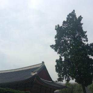 gyeong-13