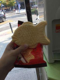 chicken bus 3