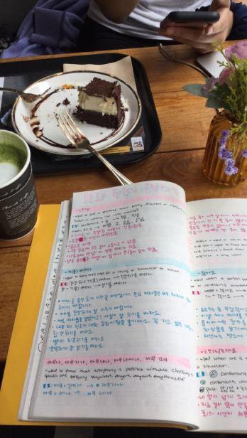 study 13