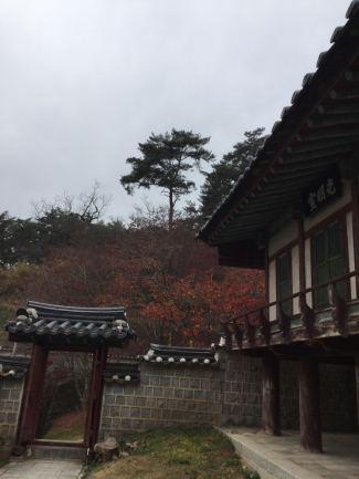 confucian 9