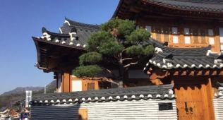 korean sauna 6
